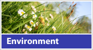 Click here for HTL and the Environment